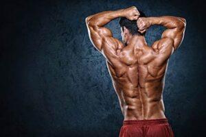 برنامه تمرینی عضله سازی برای عضلات پشت