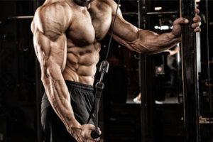 حجیم کردن عضلات پشت بازو